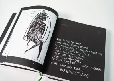 Das Auge des Raben Schwarz - Libronauti Verlag